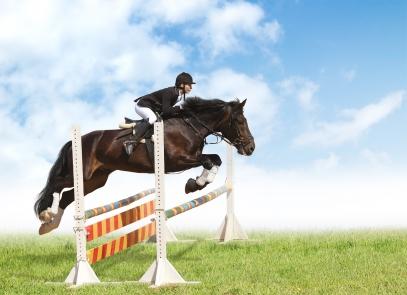 Bilder på hästar som hoppar